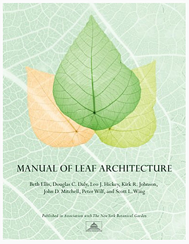 Leaf Architecture Cover