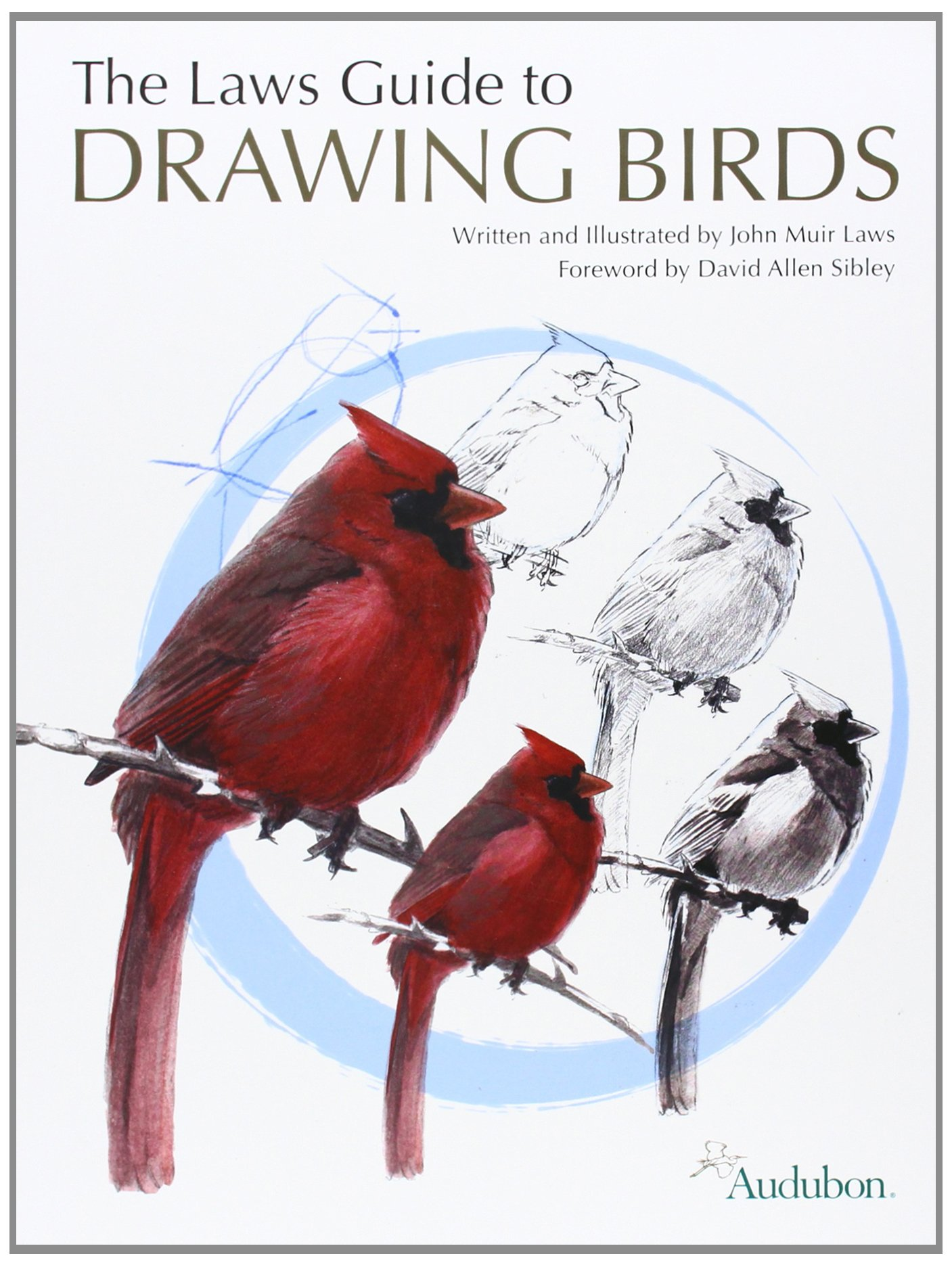 The Laws Guide to Drawing Birds book cover