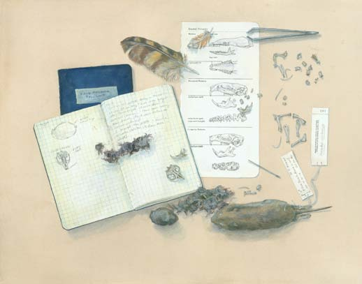 What's in an owl pellet? by Kristin Link, gouache on paper