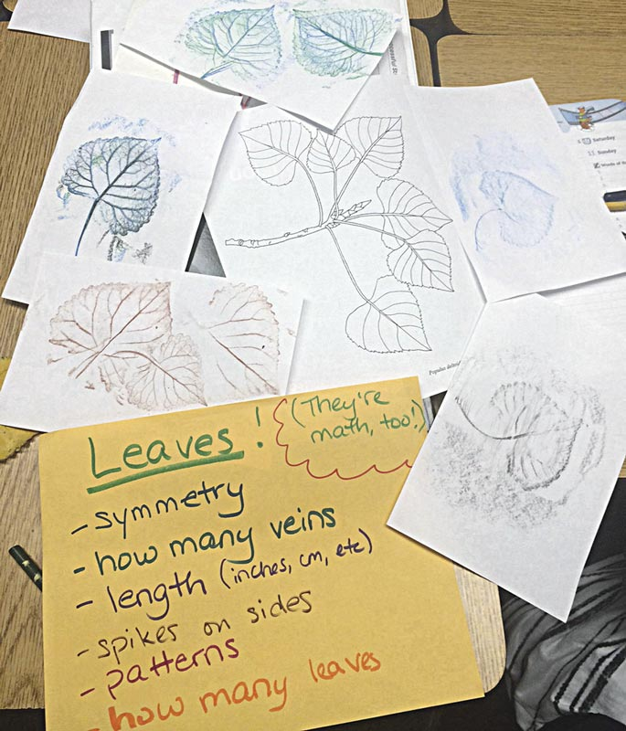 Teaching math concepts using Colorful Leaves. Photo © 2016 Erika Kvande
