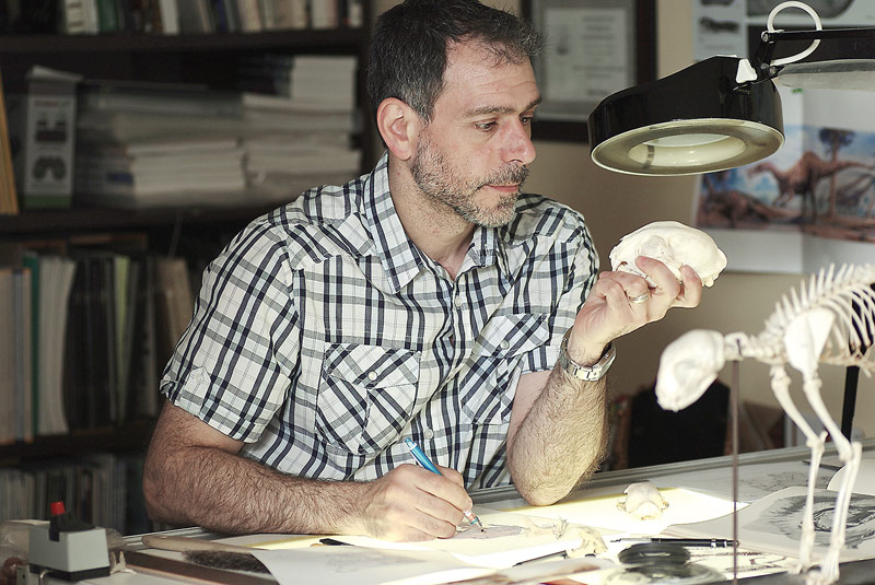 Dino Pulera portrait