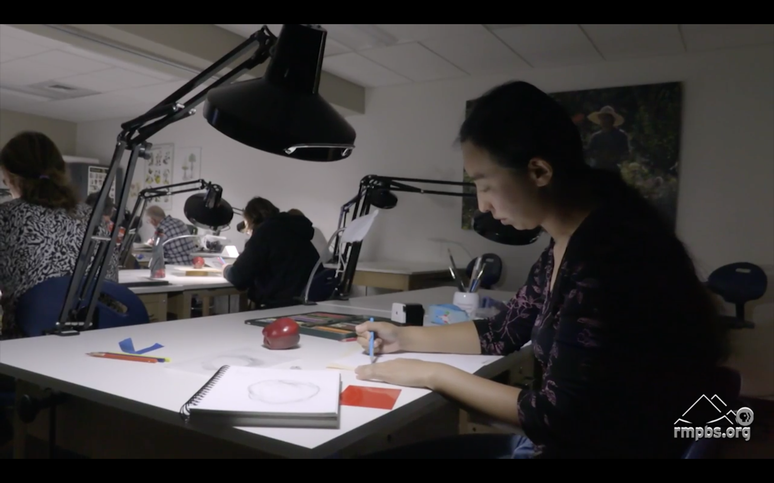 Ikumi Kayama, artist in residence at the School of Botanical Art and Illustration