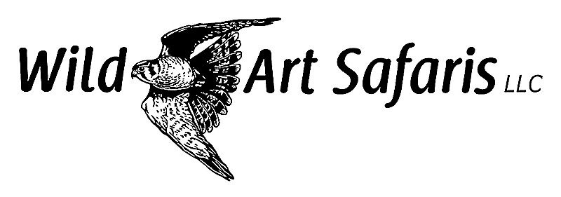 Wild Art Safaris logo