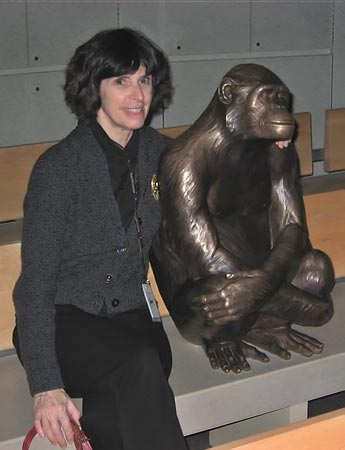 Fig. 10 - Alice Tangerini sits with the bronze chimpanzee to view the mammal evolution animation. Sally love says the chimp both attracts and repels children. Photo by Britt Griswold.