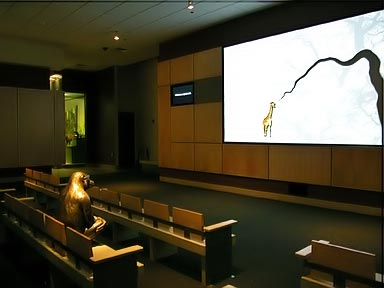 Fig. 5 - A bronze cast of a chimp joins visitors to watch a movie about mammal evolution. Photo by Mary Parrish.