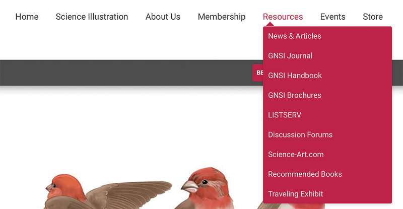 New GNSI Website drop down menus