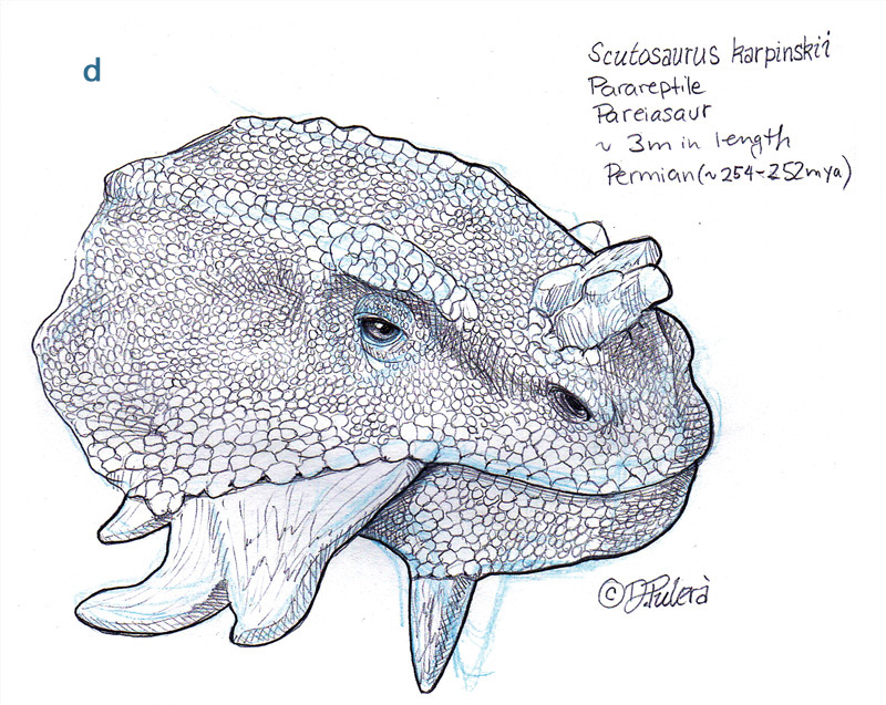 Non Photo Blue Pencils Dino Pulera Example D